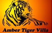 Amber Tiger Villa