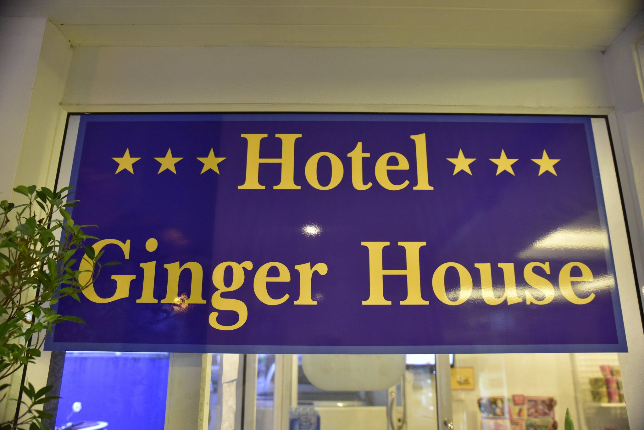 Hotel Ginger House