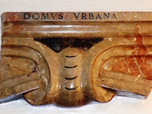 Domus Urbana