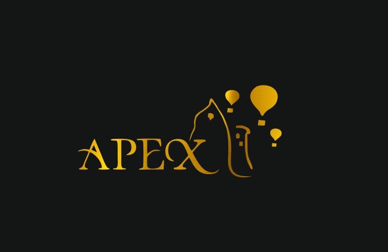 APEX CAVE HOTEL