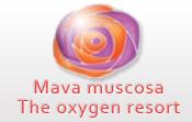 Mava Muscosa
