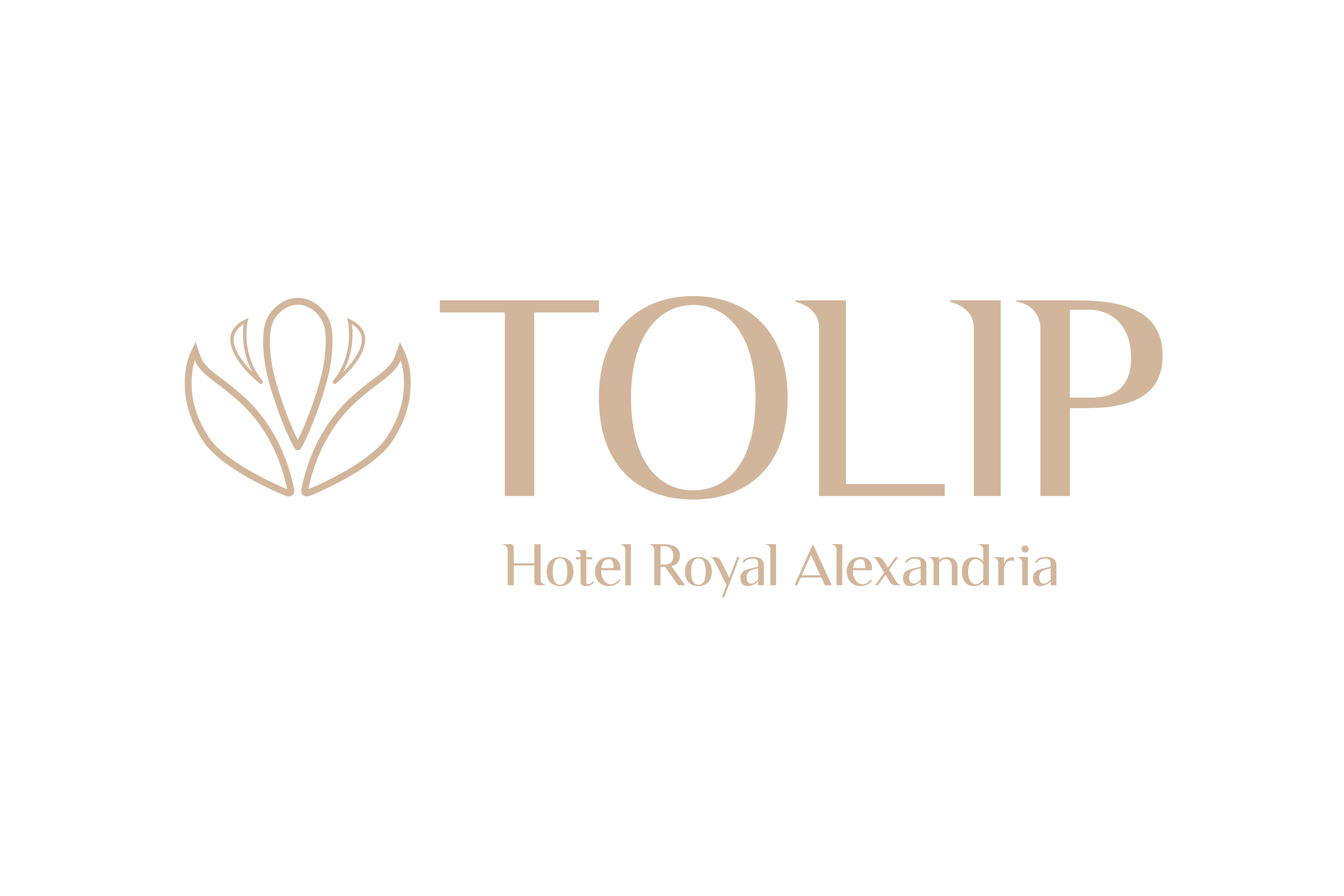 亞歷山大托里普酒店