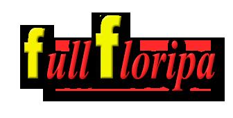 Fullfloripa Flats