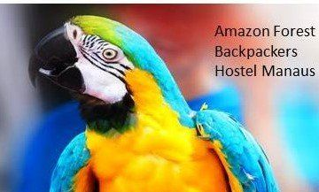 Amazon Forest Backpackers Hostel