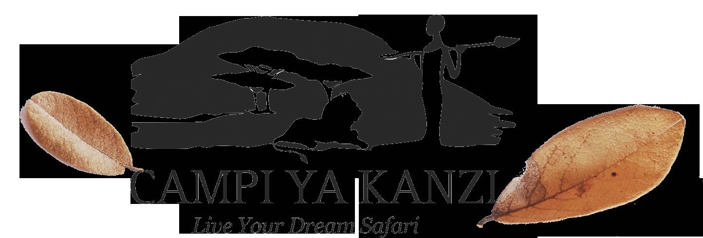 Campi Ya Kanzi
