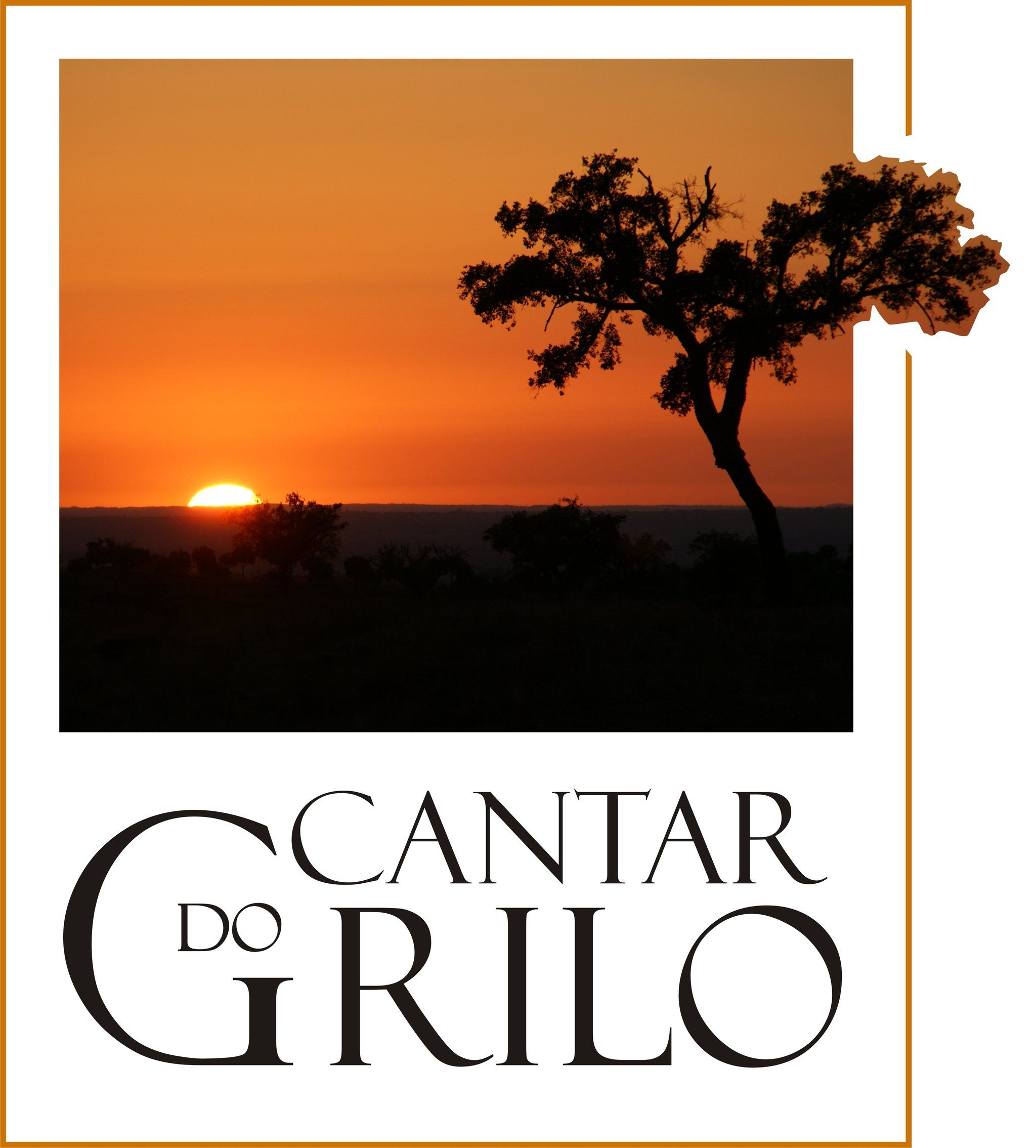Cantar Do Grilo - Turismo Rural
