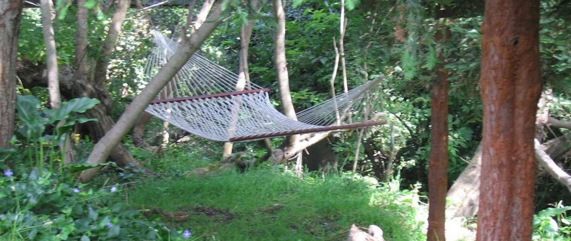 hammock1-1.JPG.1920x810_0_264_19710.jpeg.1920x0.jpeg
