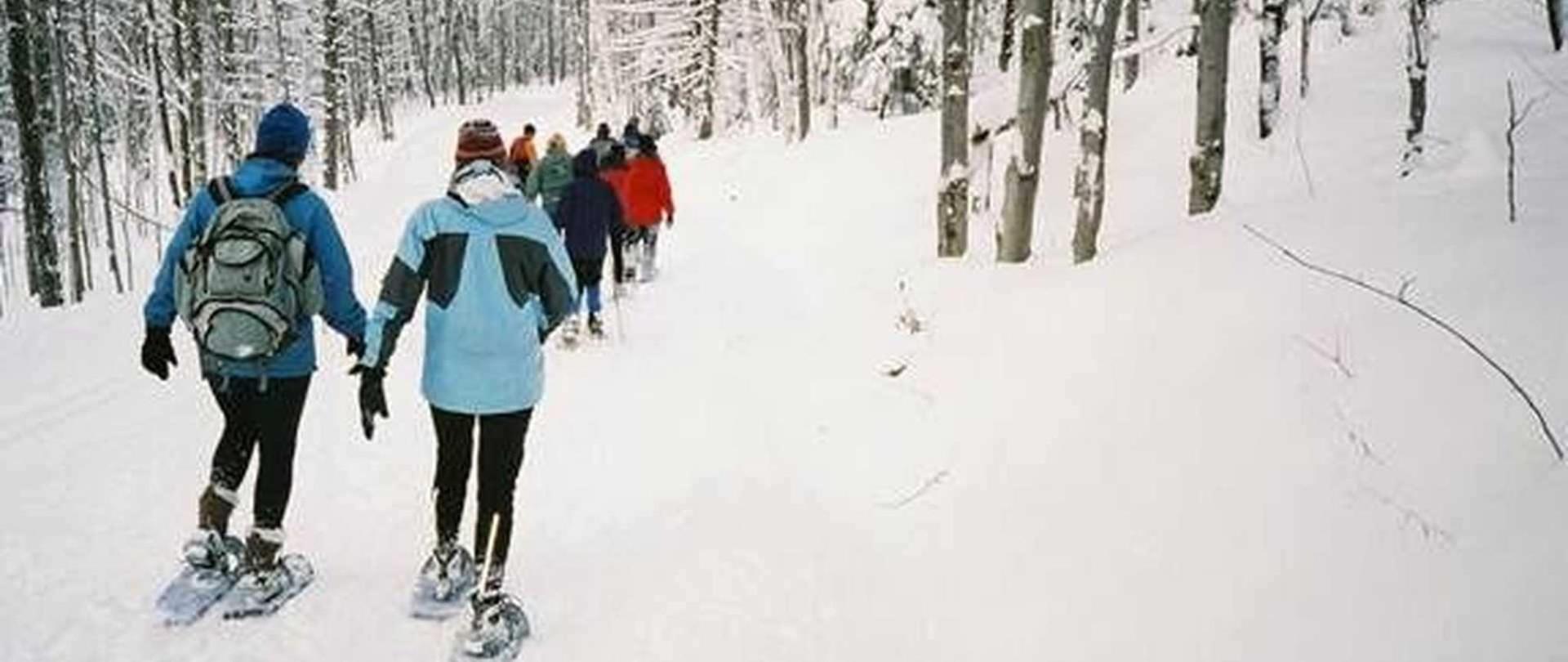 snowshoeing.jpg.1920x810_default.jpeg.1920x0.jpeg