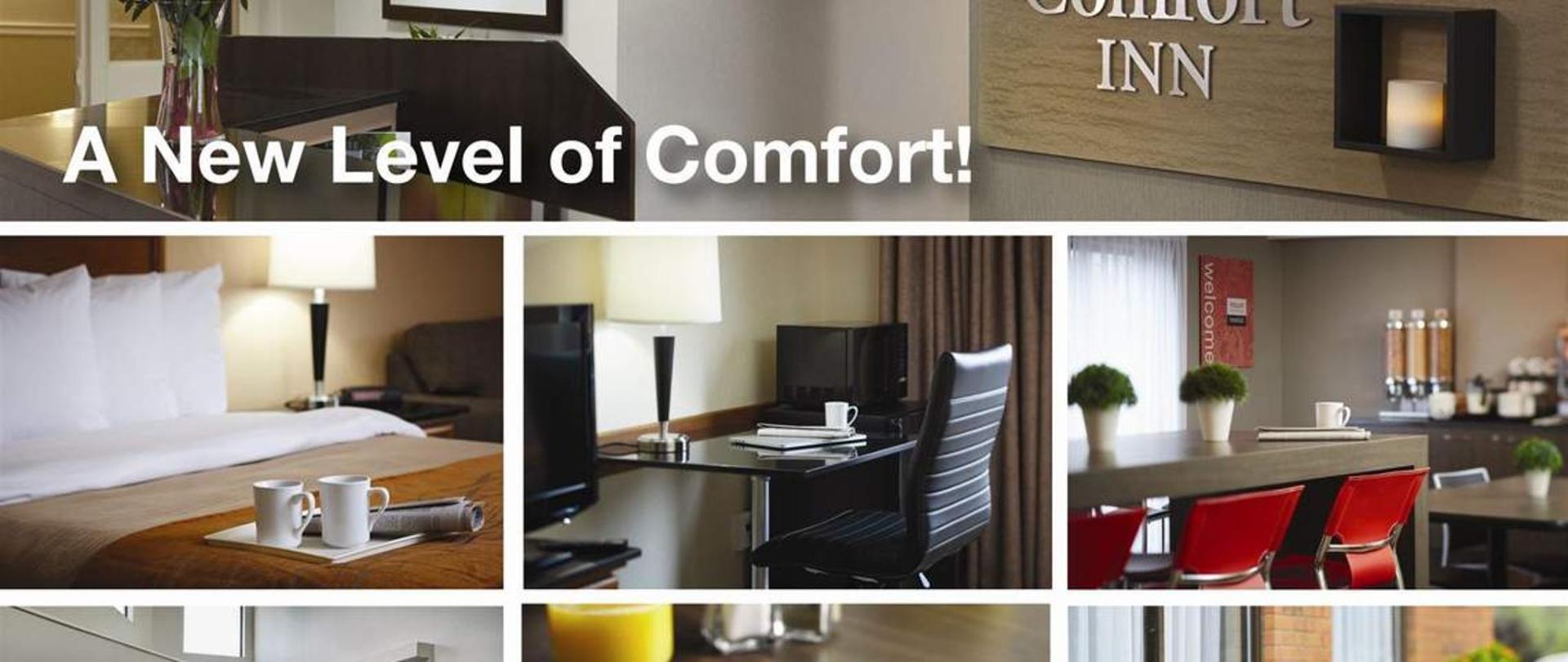 a-new-of-level-comfort.jpg.1140x481_default.jpg