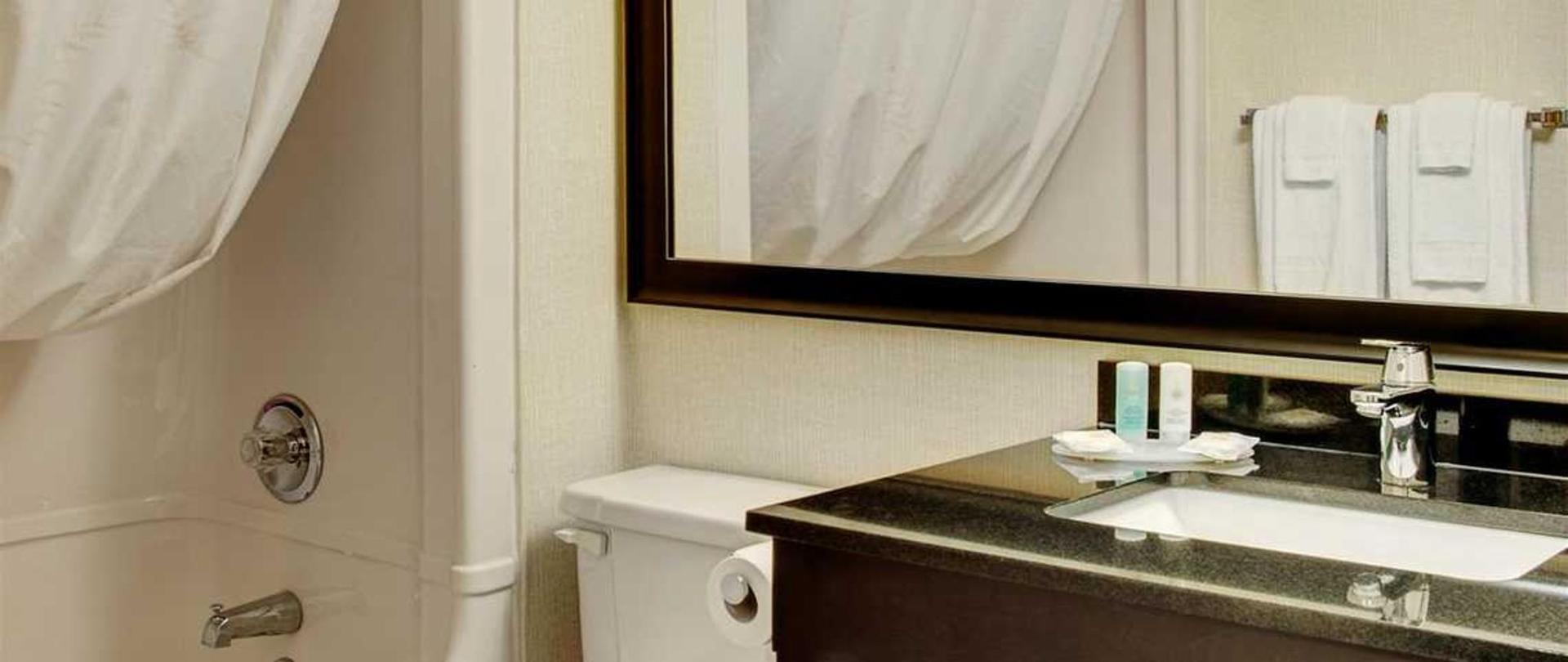 stylish-vanity-and-curved-shower-rod.jpg.1140x481_default.jpg