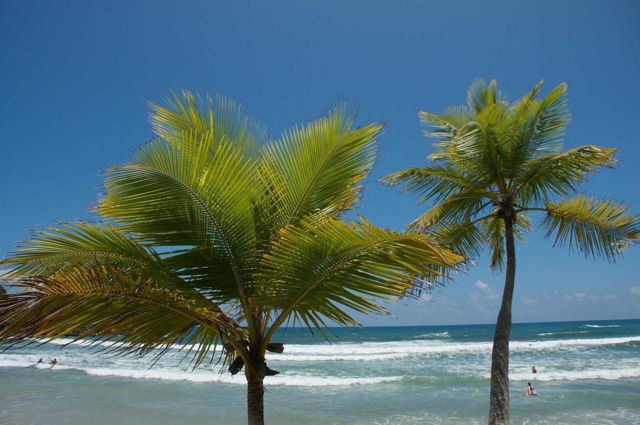 Beaches24