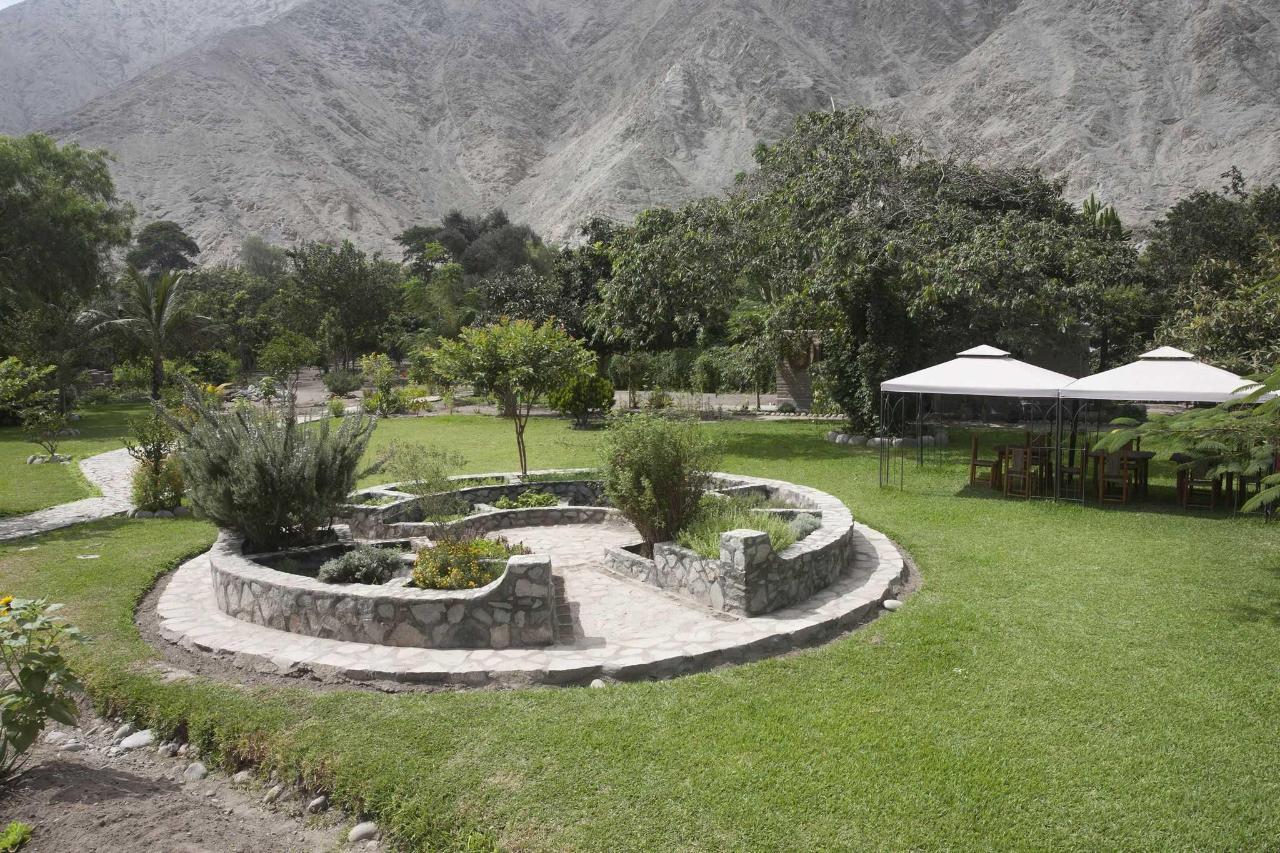 herbs garden .jpg