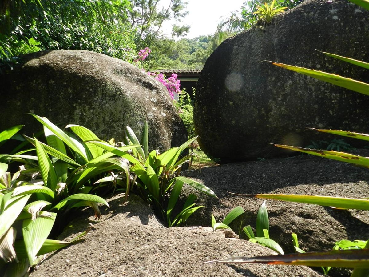 Piedras y jardines del pueblo (8) .jpg