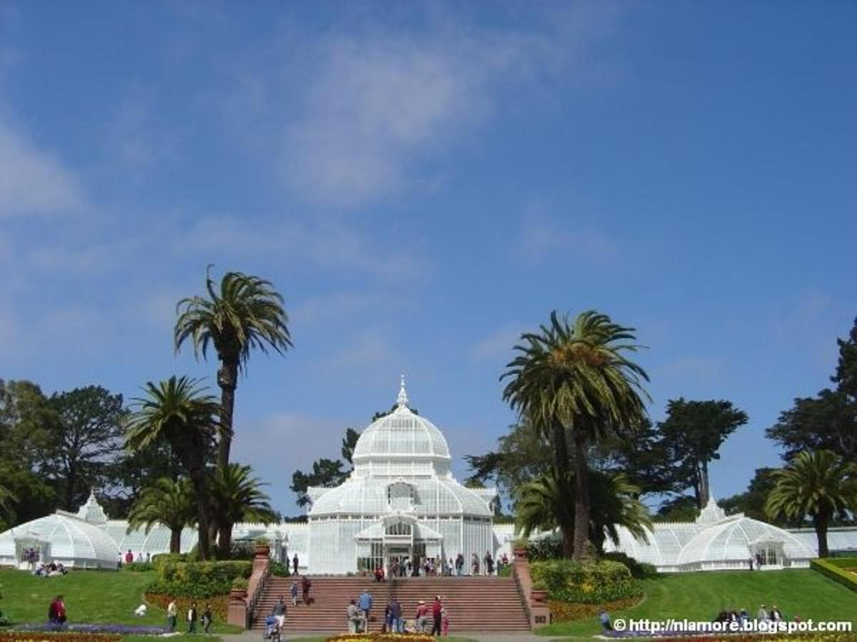 san_francisco_conservatory_of_flowers_2.jpg
