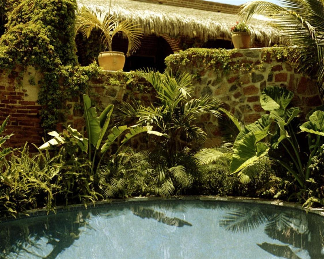 Lush tropical gardens - The Inn.jpg