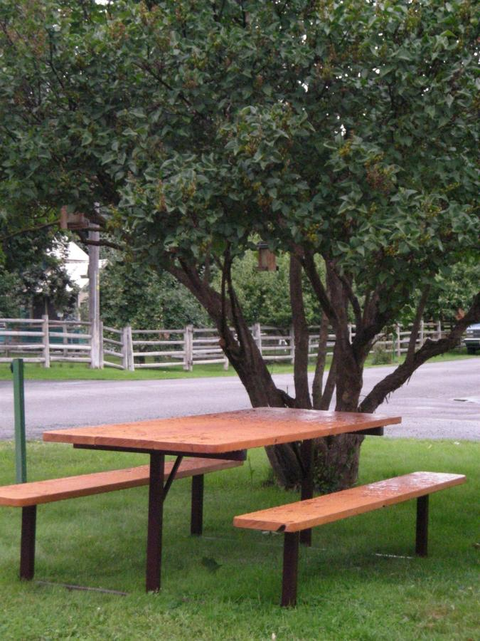 Picnic table for our guests.jpg