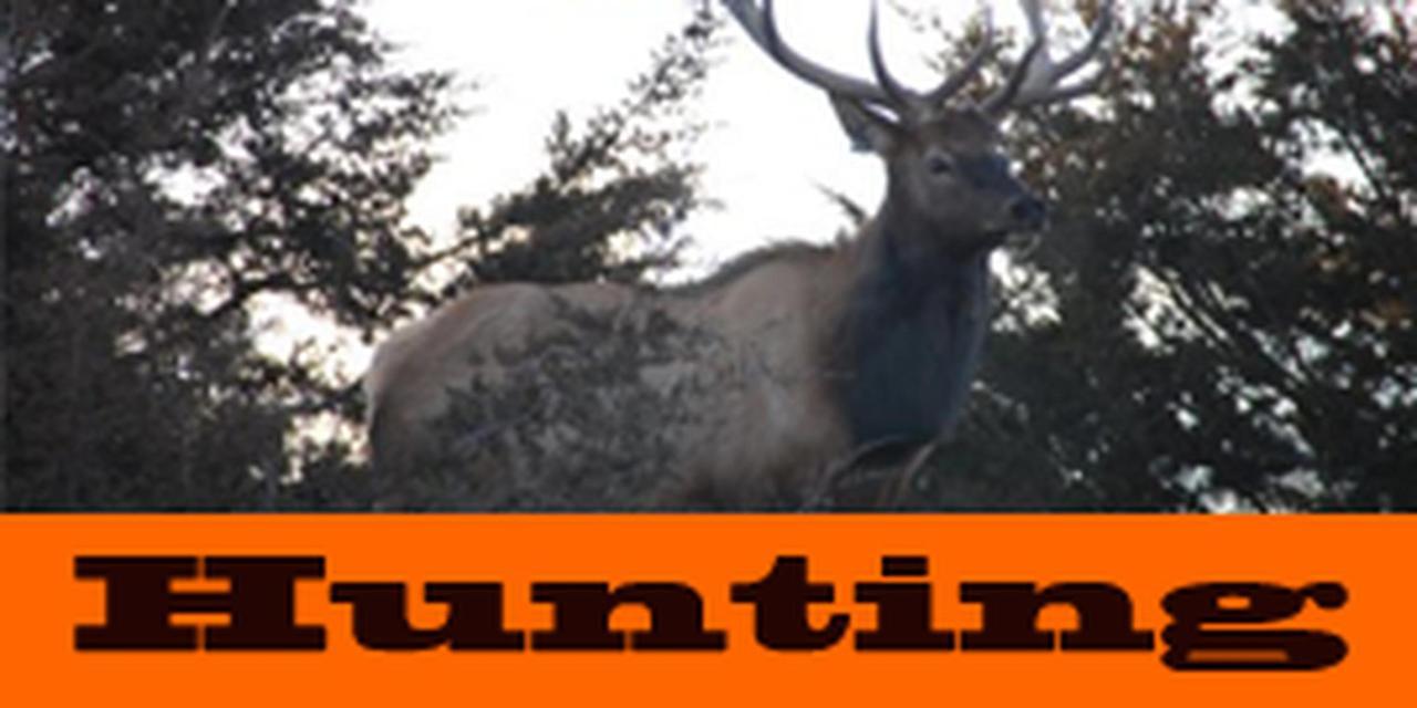 2016 Hunts