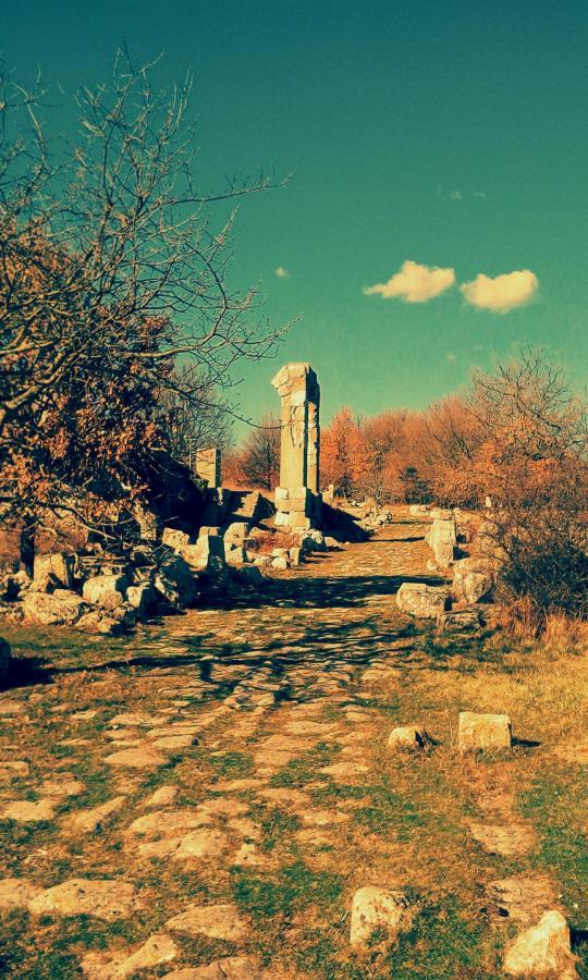 Carsulae sito archeologico.jpg