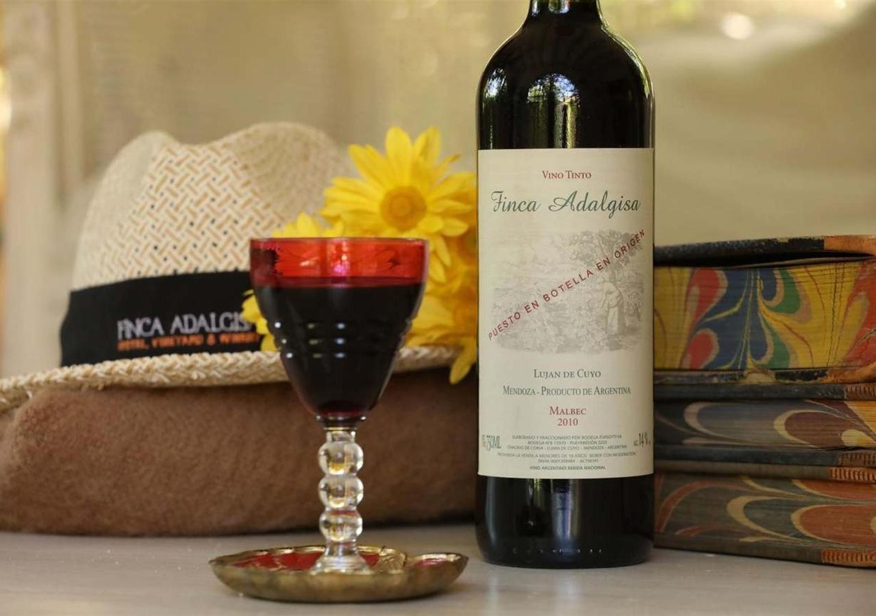 Weinberg und Malbec Wein