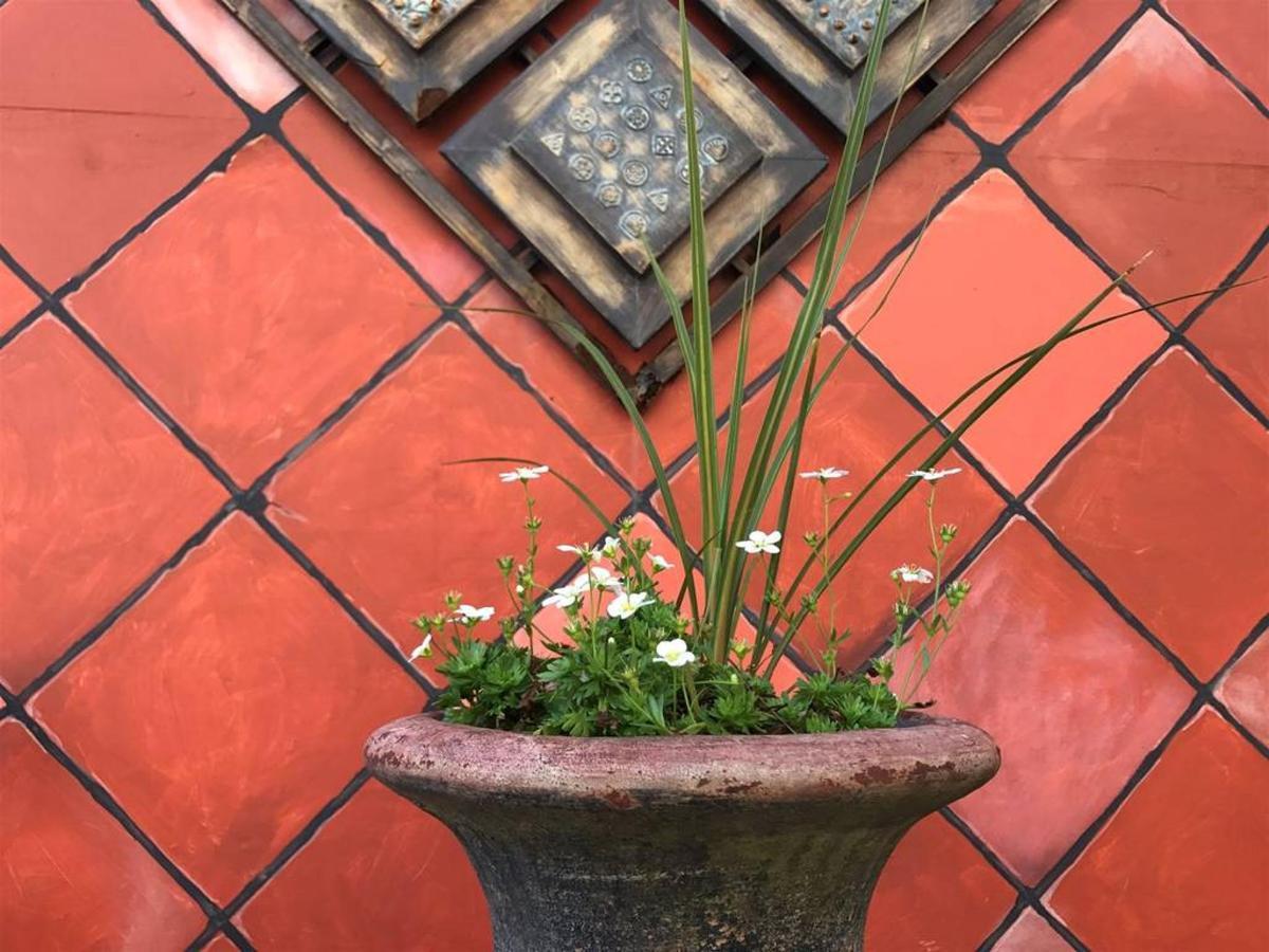 Flowers at the Inn