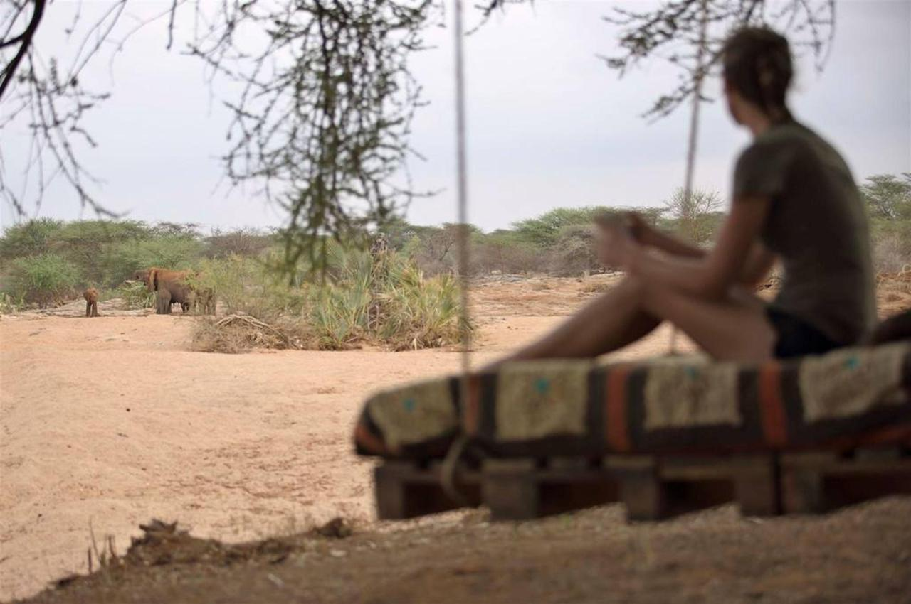 Saruni Rhino Tracking.jpg