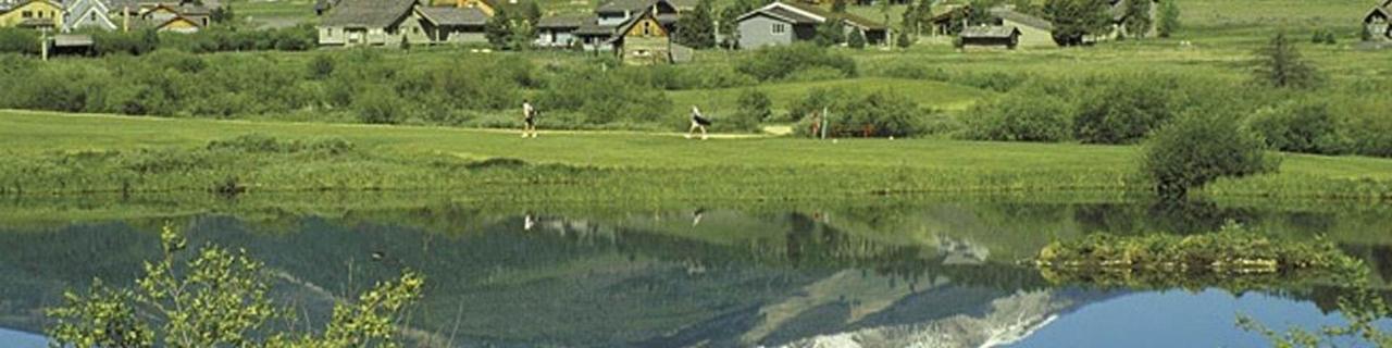 banner-photo-golf.jpg.1920x0.jpg