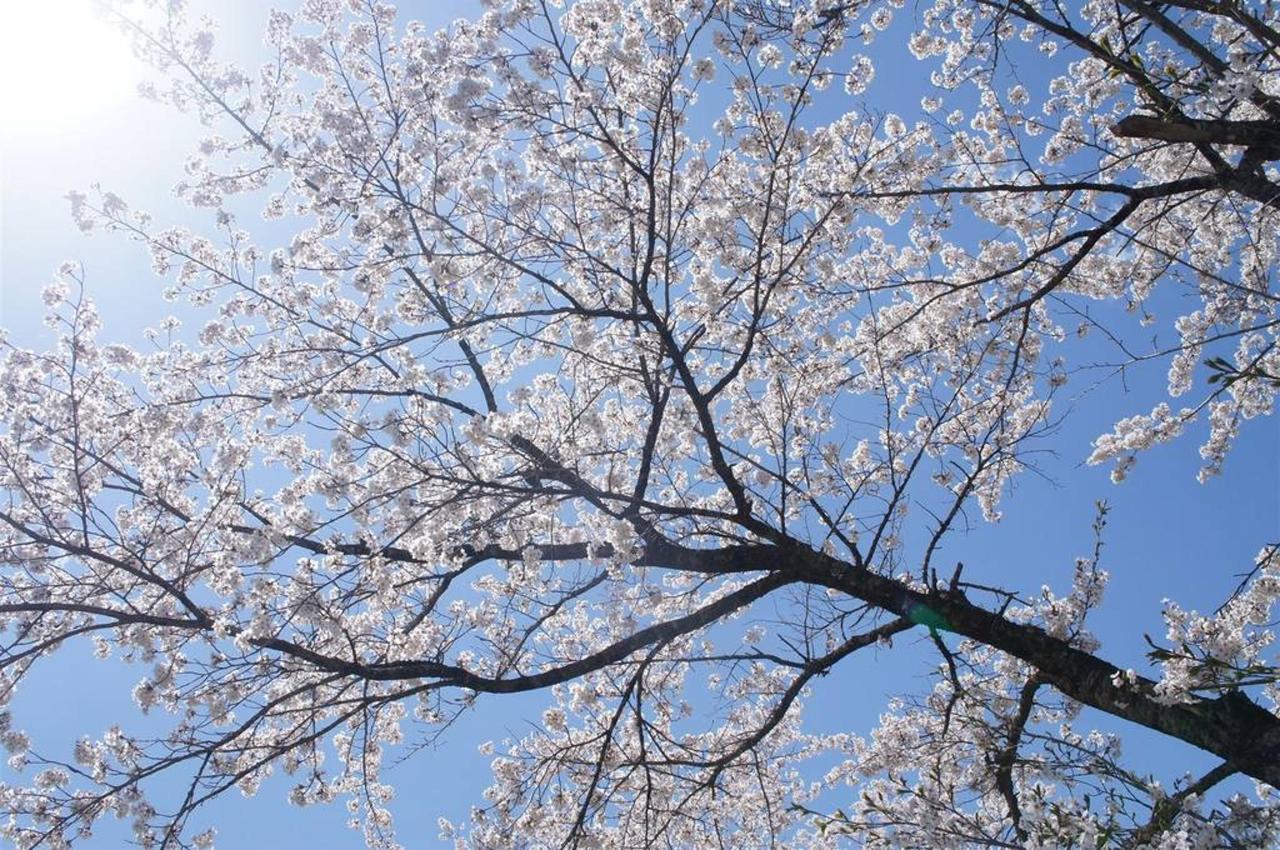 hakuba-surroundings-2.jpg.1024x0.jpg