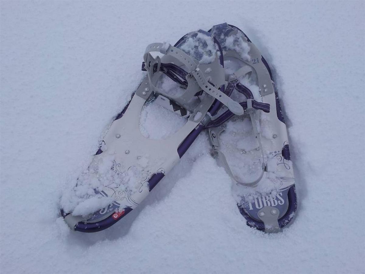 snowshoe2.jpg.1024x0.jpg