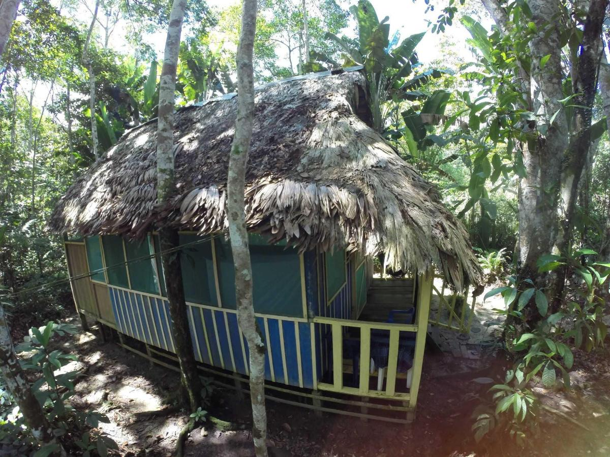 Omshanty Jungle Lodge - Rooms - Bungalows