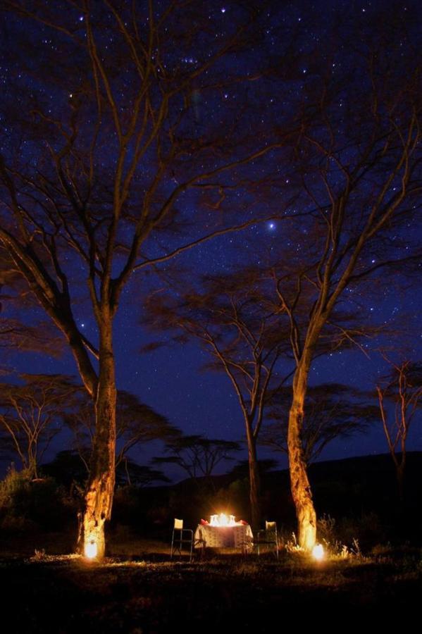 Bush dinner at Saruni Mara.jpg