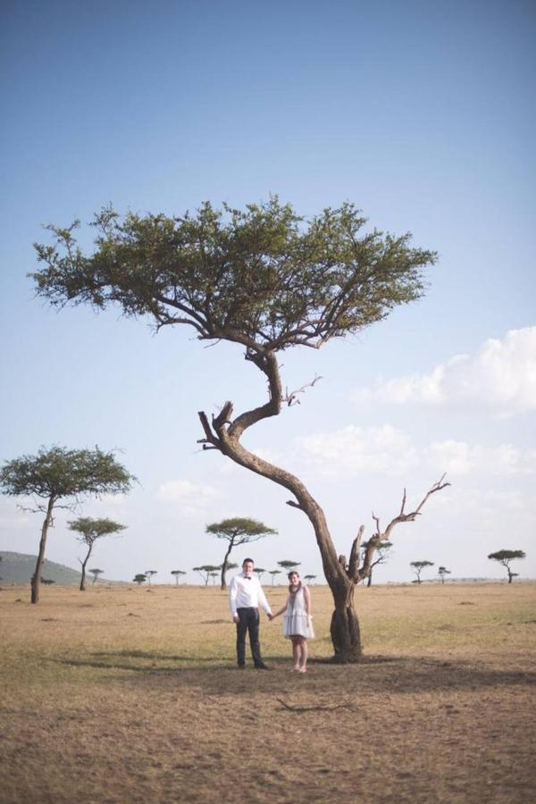 Beautiful Acacia trees and happily ever after.jpg