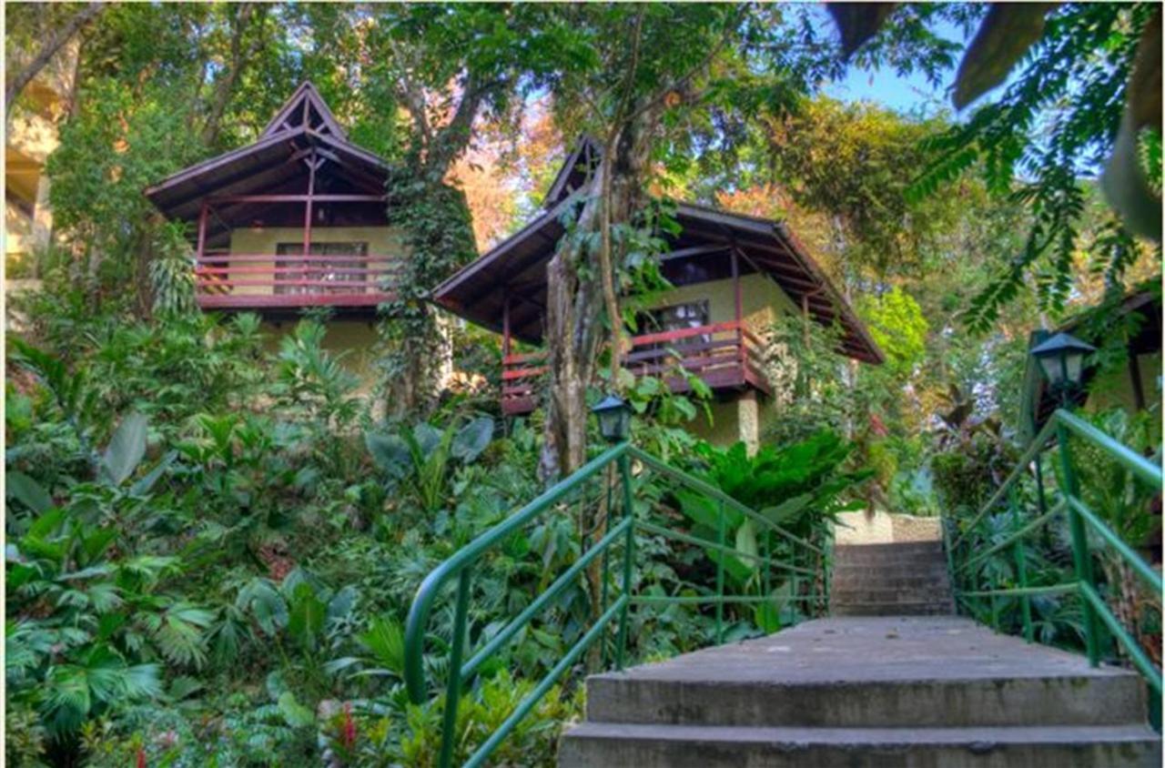 bungalow-2011.JPG.1024x0.JPG