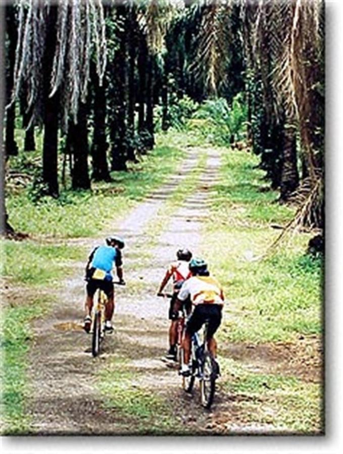 mountain-biking-coyol.jpg.1024x0.jpg