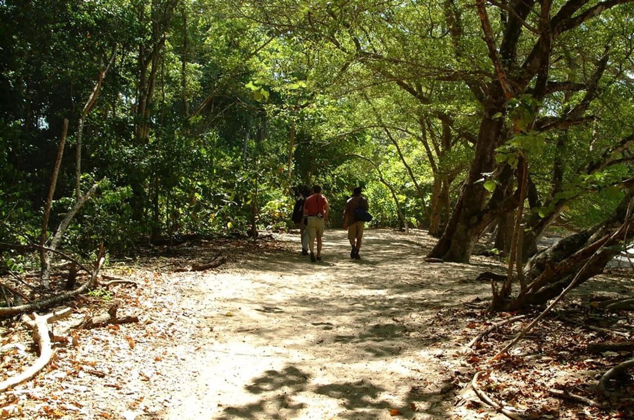 park-walk-trail.JPG.1024x0.JPG
