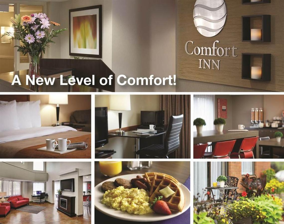 a-new-of-level-comfort.jpg.1024x0.jpg