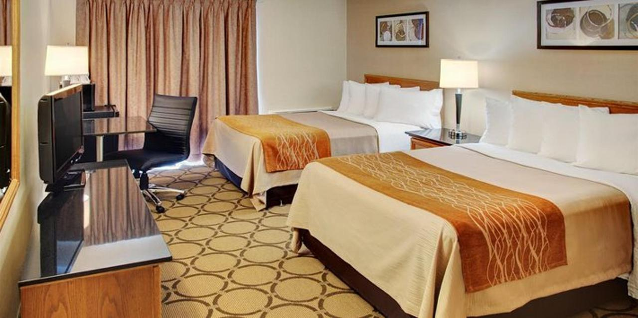 guestroom-with-two-pillowtop-beds.jpg.711x355_default.jpg