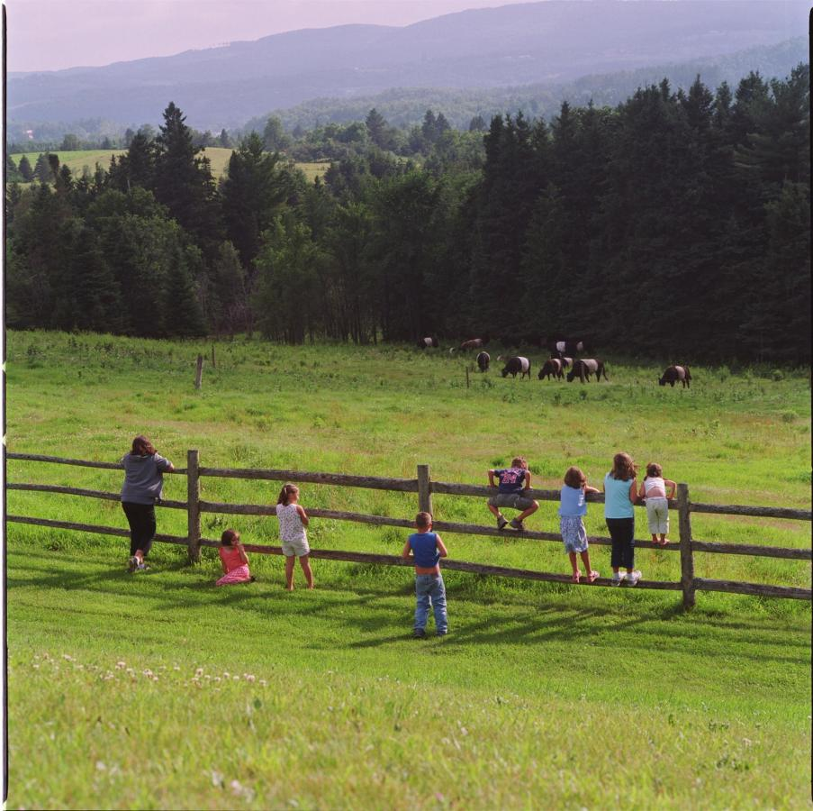 kids-on-fence.jpg.1920x0.jpg