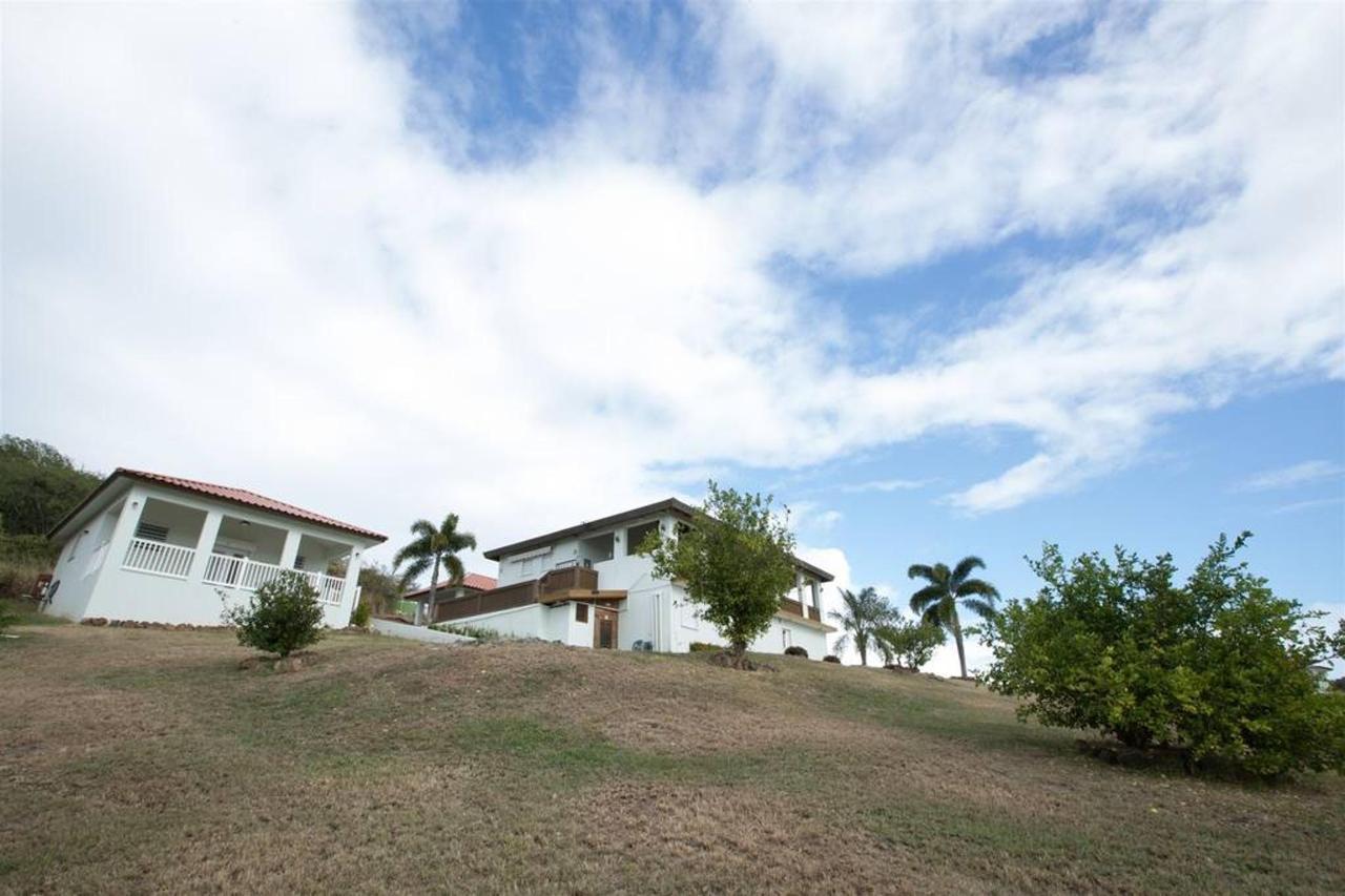 Bella Vista Estates_CVR30.jpg