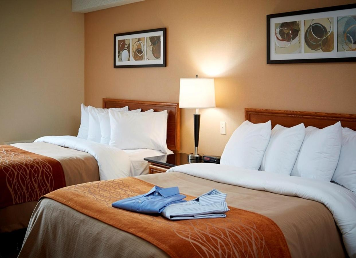two-pillowtop-double-beds.jpg.1024x0.jpg