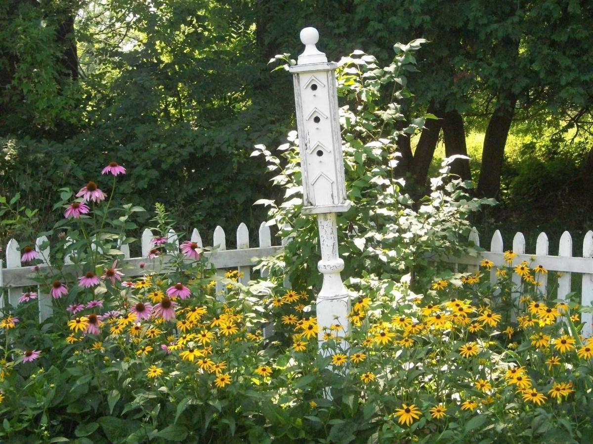 gardenbigbirdhouse.jpg.1920x0.jpg