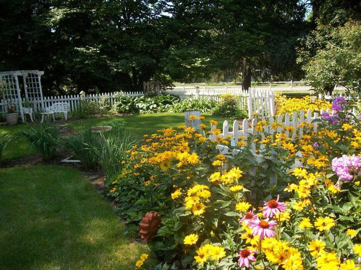 garden.jpg.1920x0.jpg