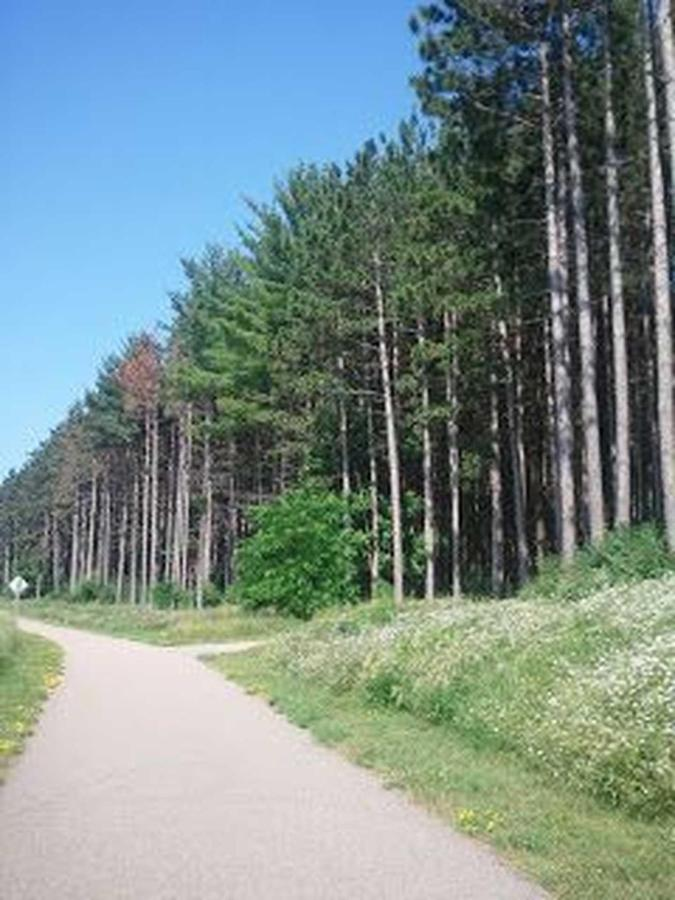 trail12013.jpg.1920x0.jpg