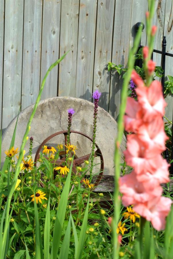 12-gardens-10.jpg.1920x0.jpg