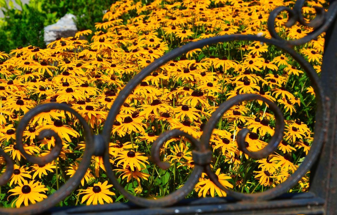 13-flowers.jpg.1920x0.jpg