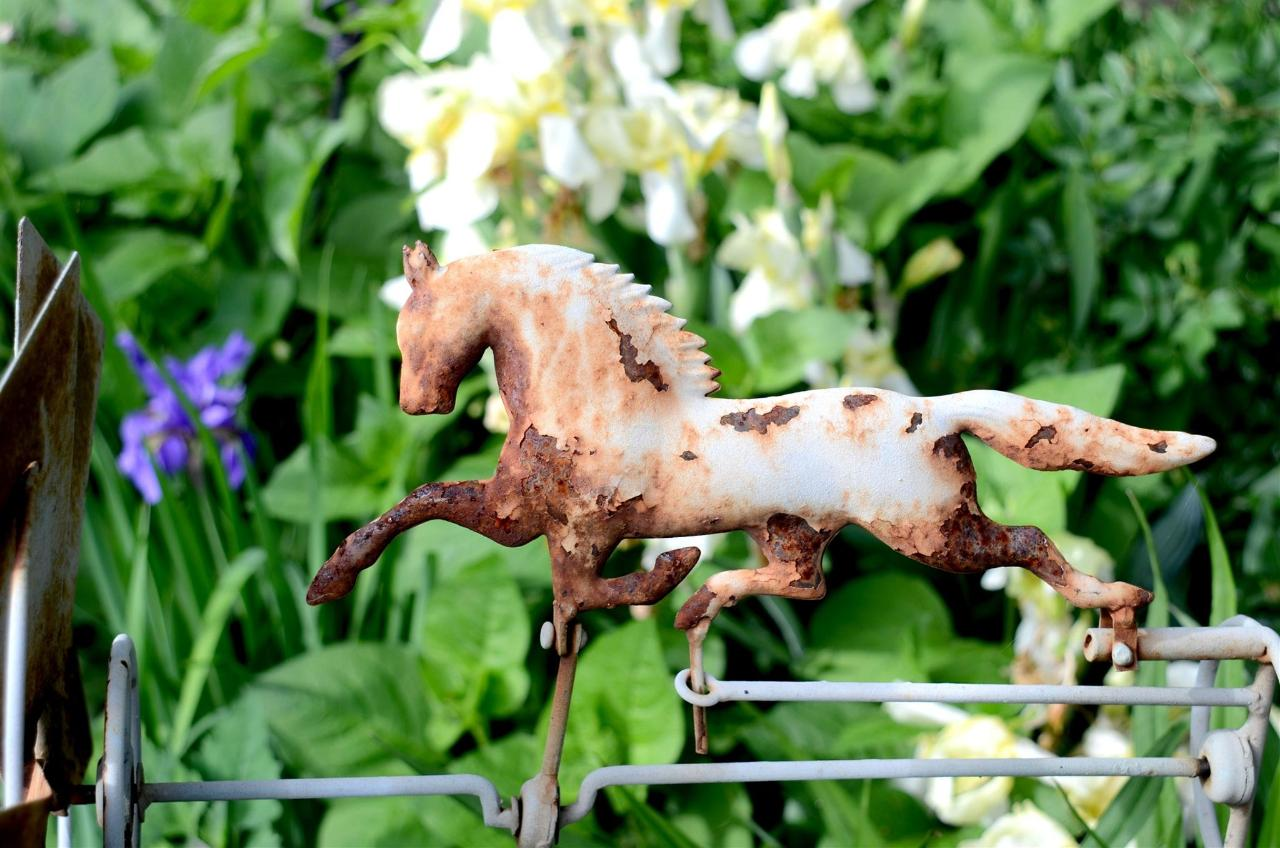 12-may-garden-1.jpg.1920x0.jpg