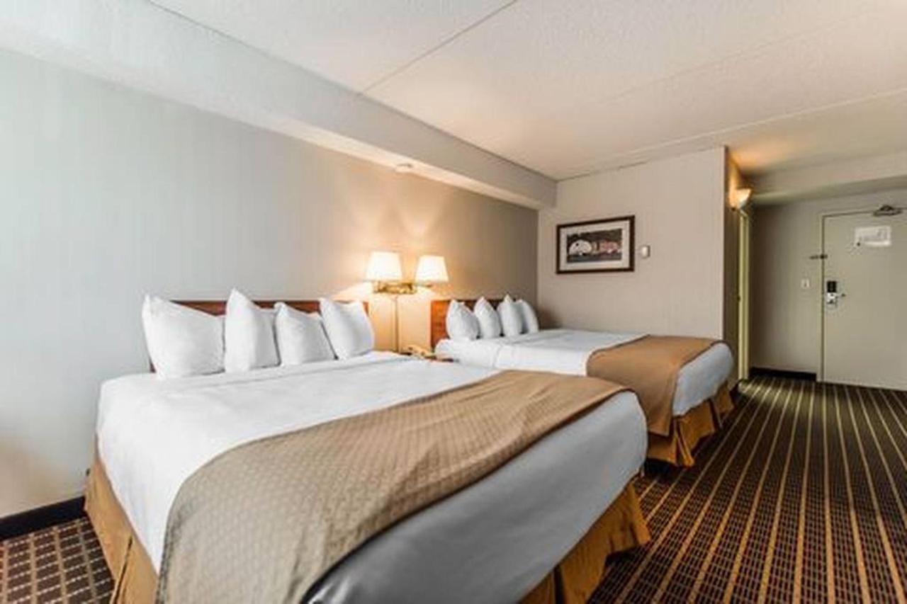 2 Queen Beds.jpg