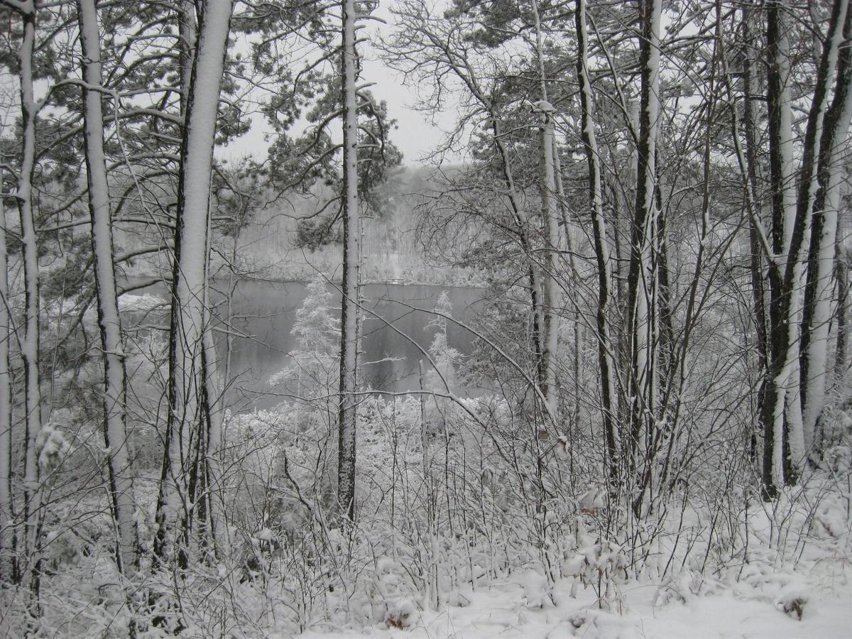 hacres-2011-winter-0001.JPG.1920x0.JPG