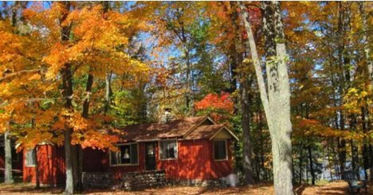 woodland-in-fall-color.JPG.1920x0.JPG