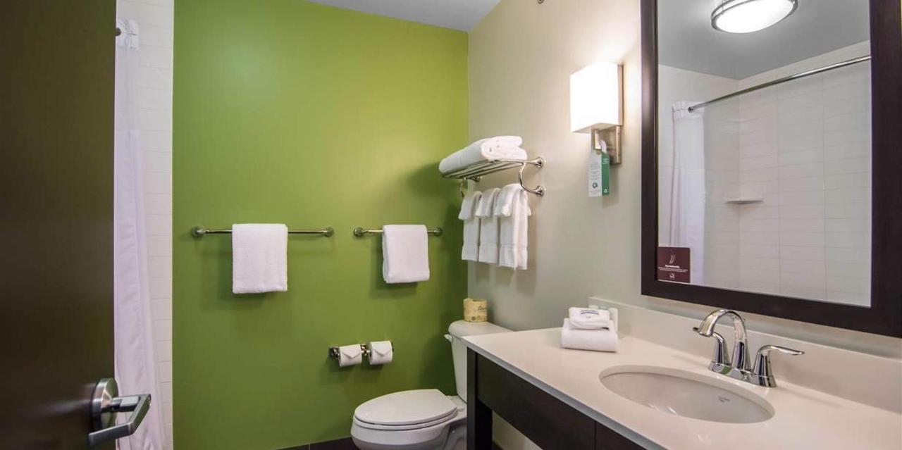 cn991bathroom1.jpg.1236x617_default.jpg