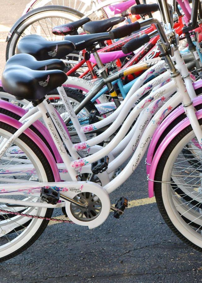 murphy-resort-bicycles.jpg